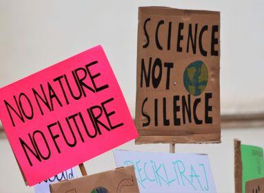 klíma tüntetés