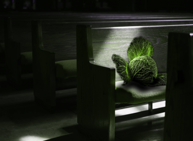 Káposztafejek ülnek a templompadokban