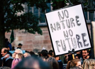 klímavédelem, aktivista, tüntetés