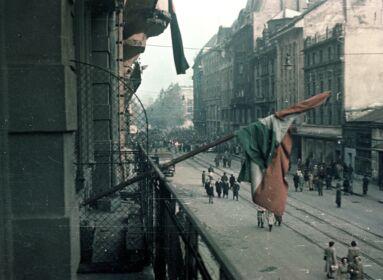A pesti srácok Olaszország nemzeti jelképei lehetnek
